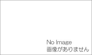 国分寺市街ガイドのお薦め|串カツ田中 国分寺店